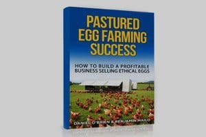 Pastured Egg Farming Success - Chicken Caravan