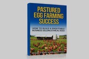 Pastured Egg Farming Success - Chicken Caravan